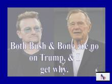 bono-bush